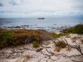 Toronto_actor_photographer_Cape Town_Boulders Beach_Cape Point_Chapman's Peak_Baboons_South Africa_Travel Photographer_Photography-10