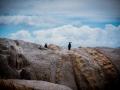 Toronto_actor_photographer_Cape Town_Boulders Beach_Cape Point_Chapman's Peak_Baboons_South Africa_Travel Photographer_Photography-14