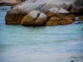 Toronto_actor_photographer_Cape Town_Boulders Beach_Cape Point_Chapman's Peak_Baboons_South Africa_Travel Photographer_Photography-17