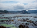 Toronto_actor_photographer_Cape Town_Boulders Beach_Cape Point_Chapman's Peak_Baboons_South Africa_Travel Photographer_Photography-19