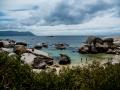 Toronto_actor_photographer_Cape Town_Boulders Beach_Cape Point_Chapman's Peak_Baboons_South Africa_Travel Photographer_Photography-21