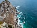 Toronto_actor_photographer_Cape Town_Boulders Beach_Cape Point_Chapman's Peak_Baboons_South Africa_Travel Photographer_Photography-29e