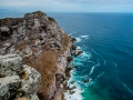 Toronto_actor_photographer_Cape Town_Boulders Beach_Cape Point_Chapman's Peak_Baboons_South Africa_Travel Photographer_Photography-30