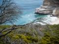 Toronto_actor_photographer_Cape Town_Boulders Beach_Cape Point_Chapman's Peak_Baboons_South Africa_Travel Photographer_Photography-42