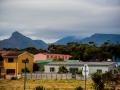 Toronto_actor_photographer_Cape Town_Boulders Beach_Cape Point_Chapman's Peak_Baboons_South Africa_Travel Photographer_Photography-58