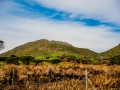 Toronto_actor_photographer_Cape Town_Boulders Beach_Cape Point_Chapman's Peak_Baboons_South Africa_Travel Photographer_Photography-59