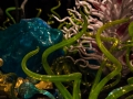 Chihuly (16)