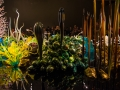 Chihuly (20)