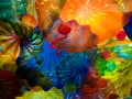 Chihuly (24)