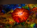 Chihuly (28)