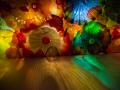 Chihuly (30)