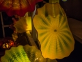 Chihuly (32)