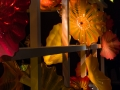 Chihuly (33)