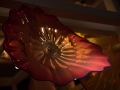 Chihuly (47)