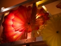 Chihuly (48)