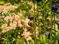 Tee_Schneider_Actor_Photographer_Toronto_Kirstenbosch_Botanical_Garden_Cape_Town-46