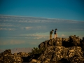 Tee_Schneider_Actor_Photographer_Toronto_Table_Mountain_Cape_Town_South_Africa-46-29